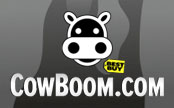 Rare Cowboom (Best Buy) 20% Off Tablets, Notebooks, Video Games 2-Day Sale