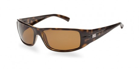 picture of Sunglass Hut Ray-ban Polarized Sunglass Sale