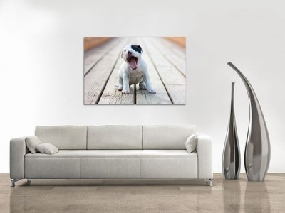 picture of Amazon Local Custom Image on Metal with Free shipping