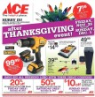Ace-Hardware-Black-Friday-2013-Ad-Scan-1