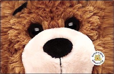 picture of $15 off at Build a Bear Workshop