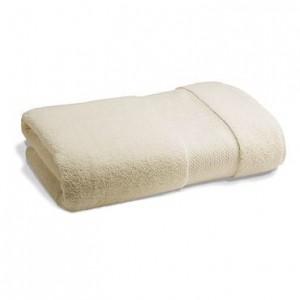 Frontgate resort towel