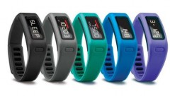 GARMIN_vivofit_color-assortment