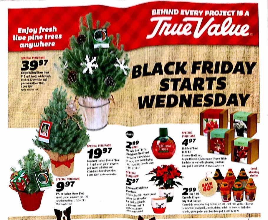 True-Value-black-friday-ad-2015-p7