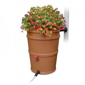 picture of Home Depot - Up to 40% Off Rain Barrel & Accessories