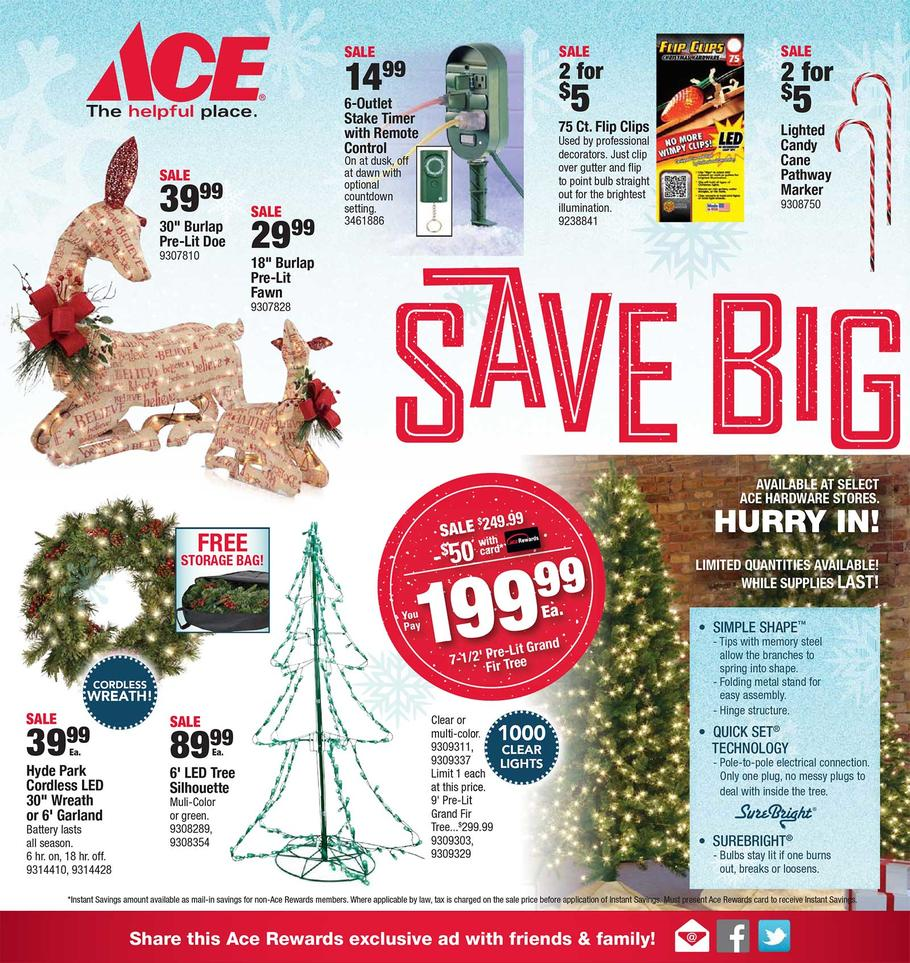 ace-hardware-black-friday-ad-scan-2015-p10