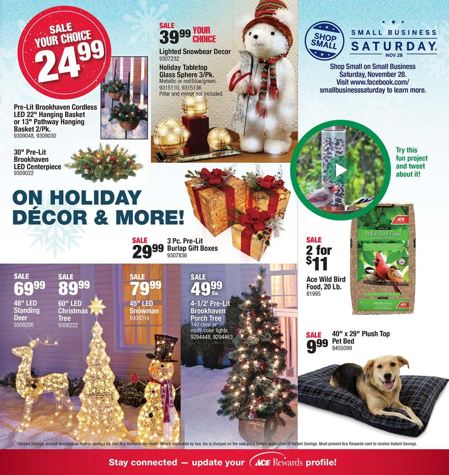 ace-hardware-black-friday-ad-scan-2015-p11