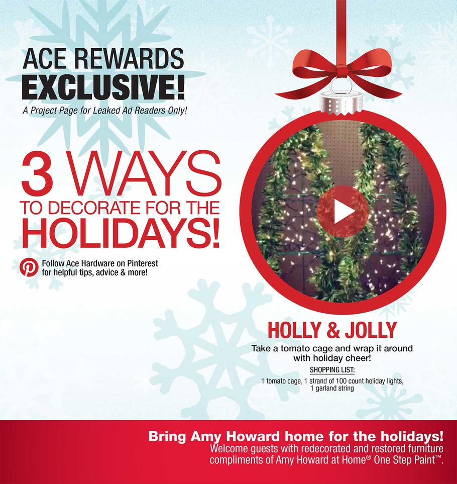 ace-hardware-black-friday-ad-scan-2015-p8