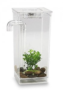 picture of My Fun Fish Tank Sale