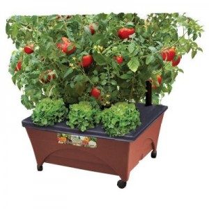 Patio Raised Garden Bed Kit with Watering System Sale