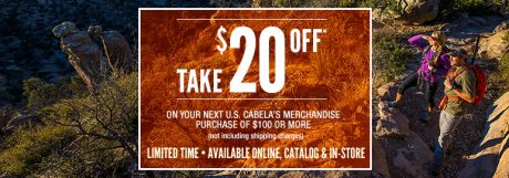 picture of Rare $20 off $100 Coupon
