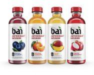 Bai Rainforest Variety Pack, Antioxidant Infused Beverage 12 pack Sale