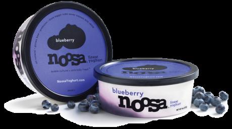 picture of Free Noosa Yoghurt Sample