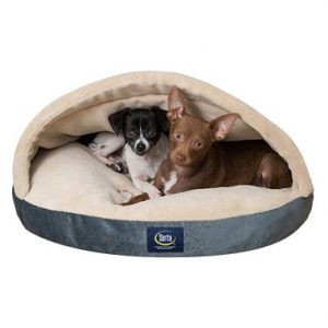 Serta Canopy Comfort Pet Bed Sale $9.81 + Free Shipping  sc 1 st  BuyVia : canopy pet bed - memphite.com