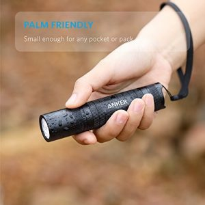 picture of Anker LC40 LED Flashlight Sale