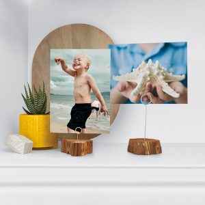 picture of Snapfish Free 8x10 Print - Free Shipping