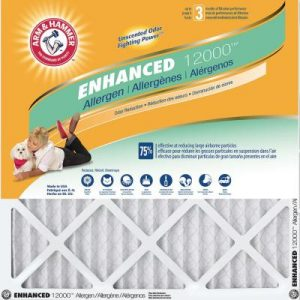picture of 4-pk Arm & Hammer Air Filter Sale