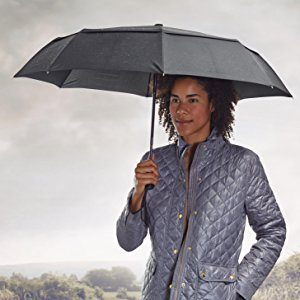picture of AmazonBasics Automatic Travel Umbrella, with Wind Vent Sale