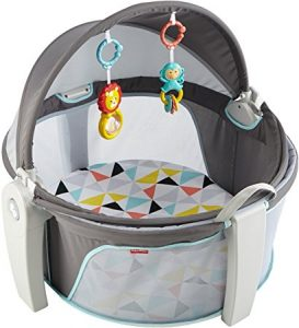 picture of Fisher-Price On-The-Go Baby Dome