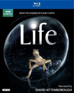 picture of Life (Narrated By David Attenborough) Blu-ray Sale