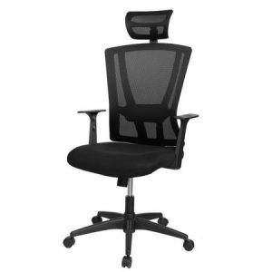 picture of Mesh Ergonomic Swivel Chair Sale