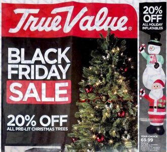 picture of True Value Hardware Black Friday 2018 Ad Scans