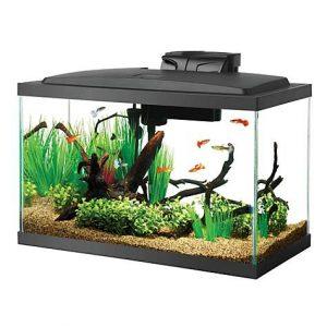 picture of Aqueon 10-Gallon Standard Glass Aquarium Tank