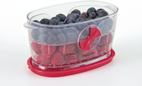 picture of Prepworks by Progressive Berry Keeper Sale