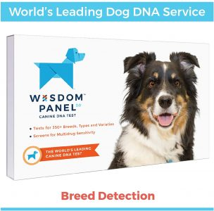 picture of Wisdom Panel 3.0 Canine DNA Test Sale