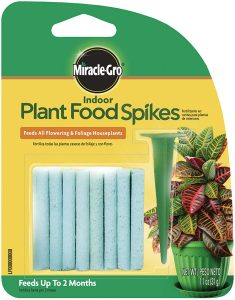 picture of Expiring Today: Miracle-Gro Indoor Plant Food, 24-Spikes Sale