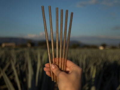 picture of Free Jose Cuervo Biodegradable Agave-Based Straws